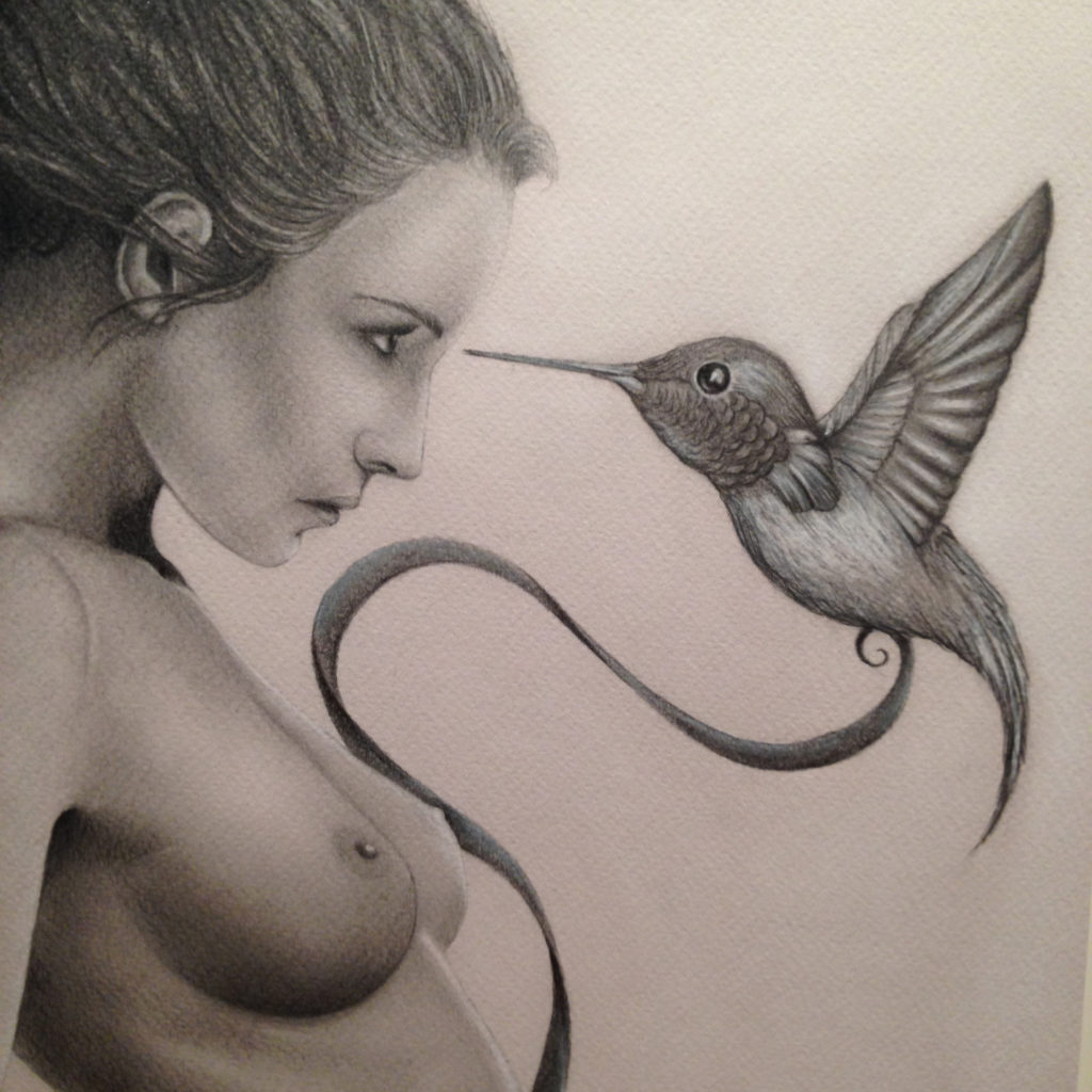 lady bird 03