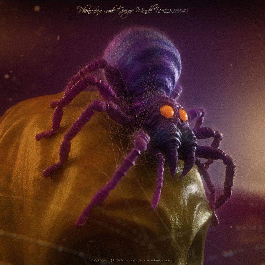 spider skull 03